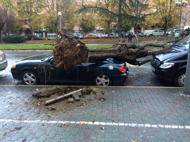 Reclamar al seguro por desastres naturales